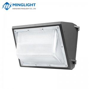 LED Wall Pack Light WPB 100W
